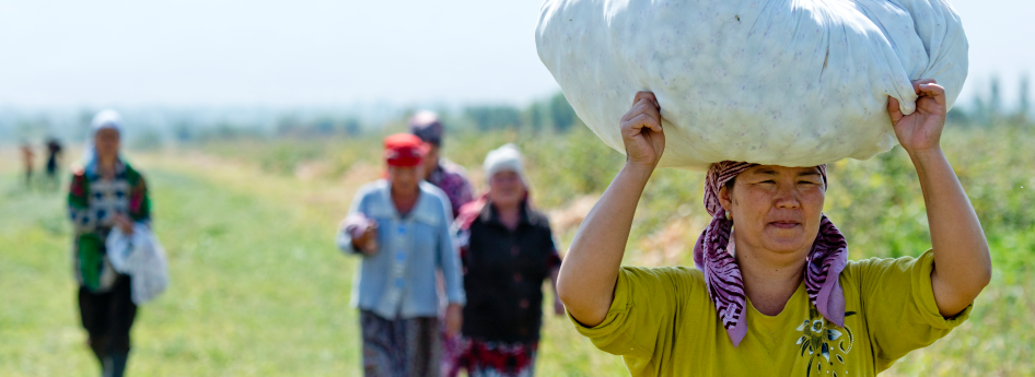 The day's work is done - tired and contented the harvest helpers go back to their village. Machines, fuel and artificial fertiliser are in short supply in Kyrgyzstan. The organic cotton farmers produce their own (organic!) fertiliser.