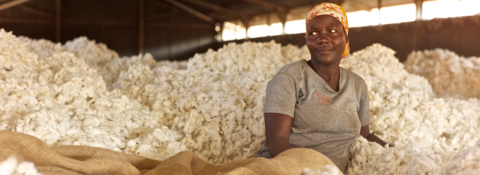 A breather in the cotton fluff. The warehouse is nearly filled to the roof; the cotton harvest is practically complete. After the hard physical labour all are tired but content.
